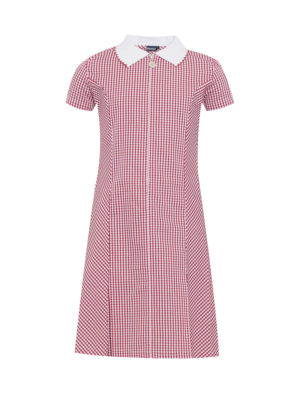 Banner Avon Red Gingham Summer Dress