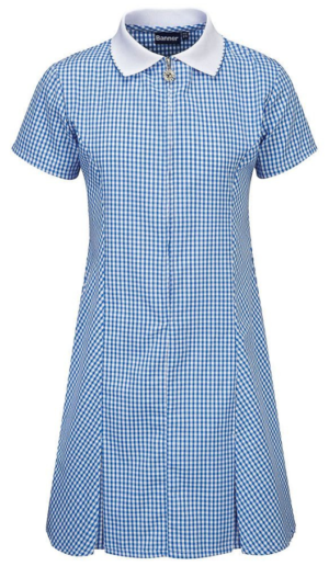 Banner Avon Blue Gingham Summer Dress