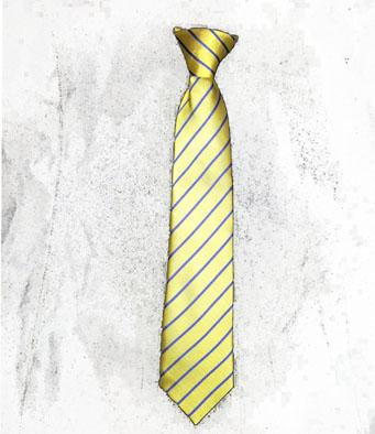 St Mary's Evesham Elasticed Tie